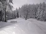 Neve sulle Alpi, nelle prossime ore fiocchi anche sotto i 2000 metri di quota