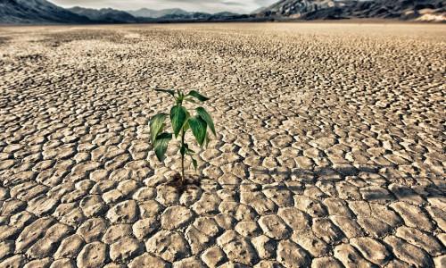 contro_siccità