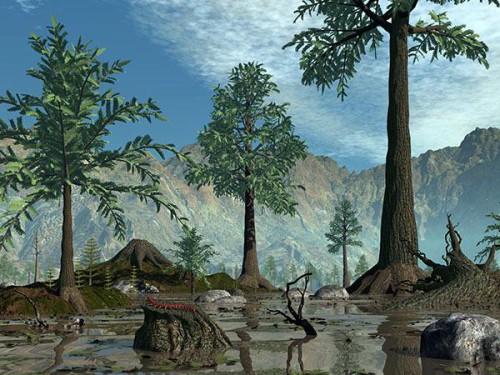 Foresta fossile di 400 milioni di anni fa scoperta nelle Isole Svalbard