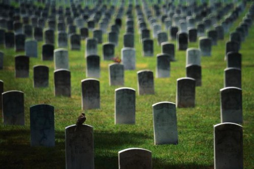 Mortalità in aumento: spaventosi i dati dell'Istat