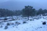 Messico, storica nevicata nello Stato di Coahuila