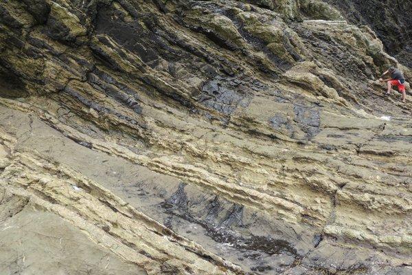 meteorite dinosauri frammenti