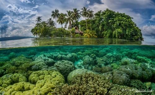 Cambiamenti climatici, scompaiono cinque isole nel Pacifico