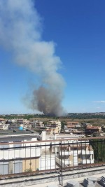 Incendio Roma, a fuoco la Pineta Sacchetti