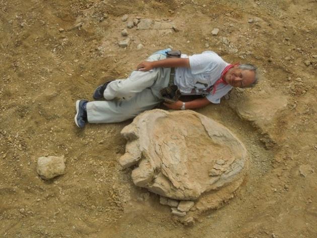 Impronta da record di un Titanosauro scoperta in Cina