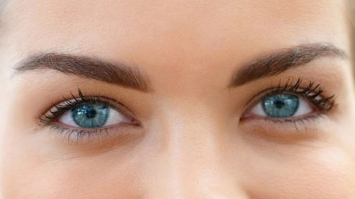 L'intelligenza si rivela dagli occhi: dipende dalle pupille