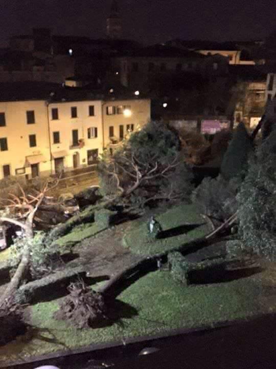 Devastazione a Piazza del Carmine, Pistoia