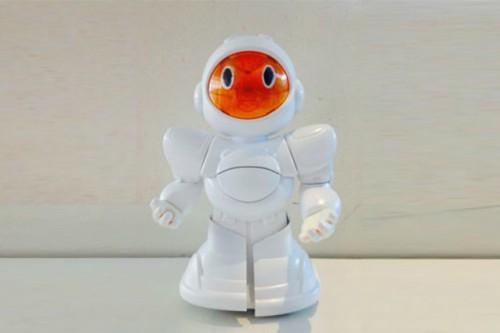 Biro, il robot che abbatte i costi della correte elettrica