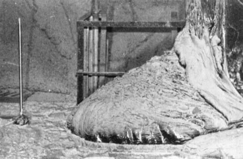Ecco forse la primissima immagine scattata all'Elephant Foot