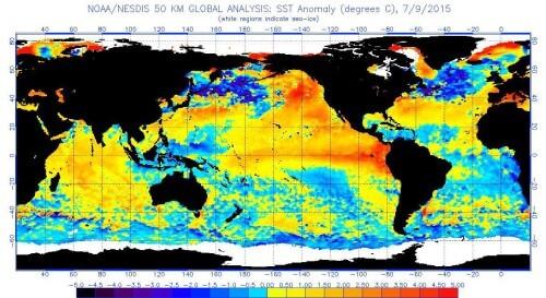 Ecco le conseguenze del fenomeno di El Nino nel mondo - NOAA