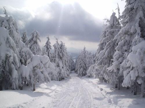 Neve Alpi: primi fiocchi in arrivo a quote medio alte per l'inizio di Settembre