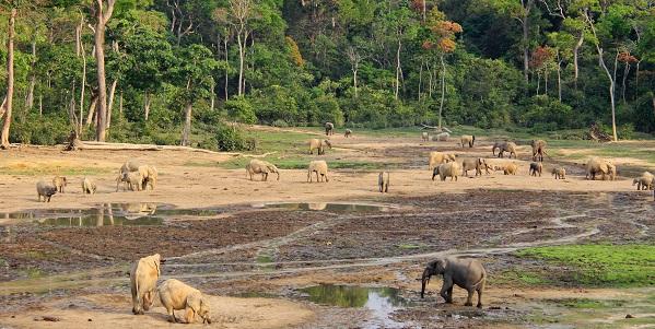 aree protette UNESCO