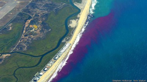 sostanza rosa inquinamento