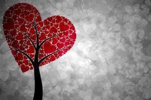 cuore infrant