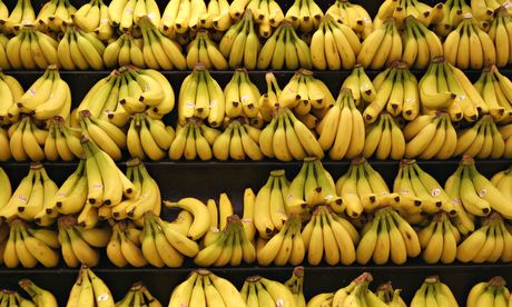 banane peste