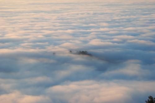 nebbia3