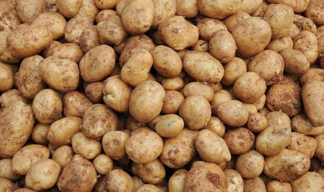 patate su marte