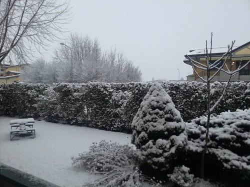 Neve a Padova accumuli
