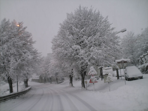 Neve al Nord