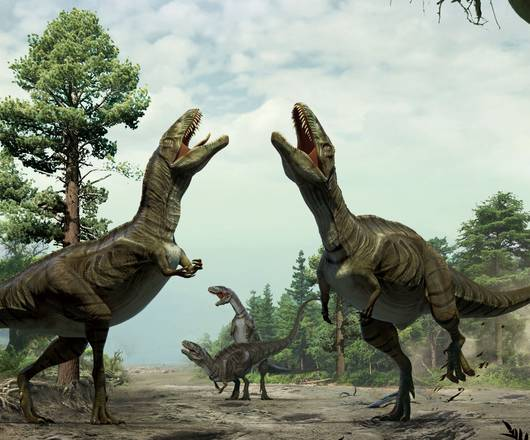 dinosauri corteggiamento