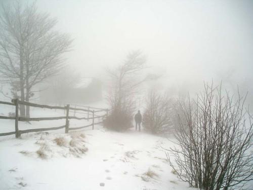 freddo e neve