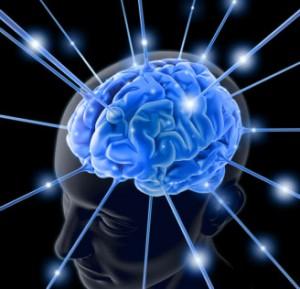 funzioni cognitive