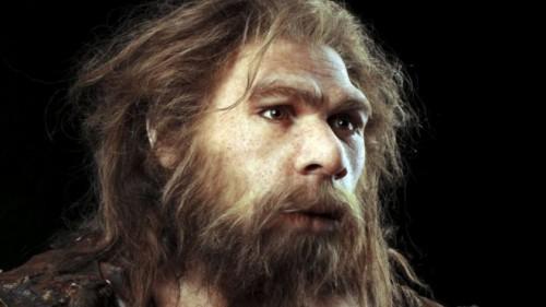 uomo di neandertha estinzione