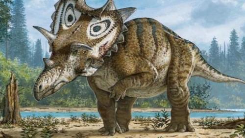 nuovo dinosauro